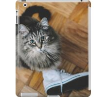 seattle cat. iPad Case/Skin
