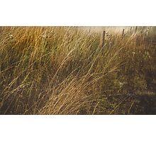 Boundary Line Photographic Print