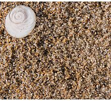 sand and shell Photographic Print