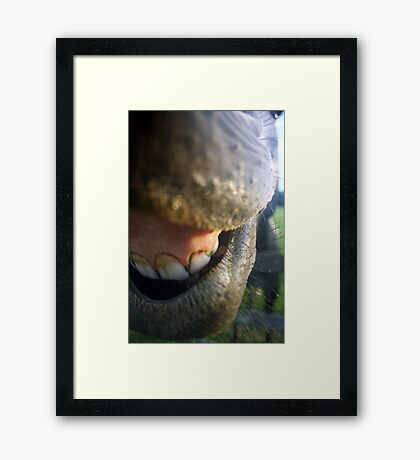 Needs Dental Work Bad Framed Print