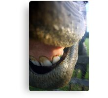Needs Dental Work Bad Canvas Print