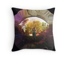 Catching Reflections Throw Pillow