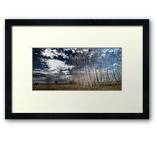 Manning River Drive HDR Framed Print