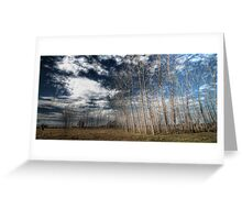 Manning River Drive HDR Greeting Card