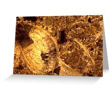 Brachiopod fossils in thin-section from Usk, Monmouthshire Greeting Card