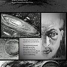 Planet of the Rains by Cameron Hampton