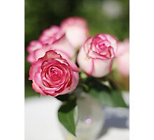 Rosey Dream Photographic Print