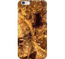 Brachiopod fossils in thin-section from Usk, Monmouthshire iPhone Case/Skin