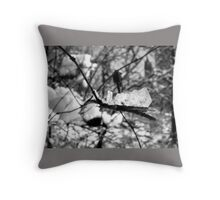 NYC Central Park Winter Throw Pillow