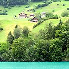 Swiss green by JadedFlorence