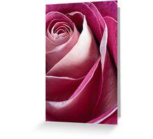 Single pink rose Greeting Card