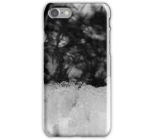 NYC Central Park Winter 4 iPhone Case/Skin