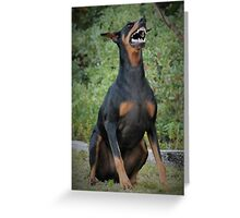 Doberman Greeting Card