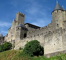 Carcassonne Cite, France by jacqi