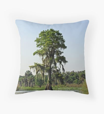 On the Banks of the St. Johns River 2 Throw Pillow