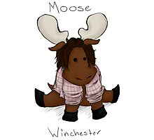 Moose Winchester. Writing. Photographic Print