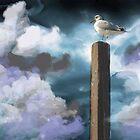 BIRDIE by Spiritinme