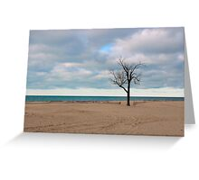 A tree by the lake. Greeting Card