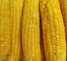 Sweet corn on the cob by John Spies