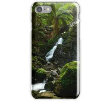 In The Depths Of The Forest iPhone Case/Skin