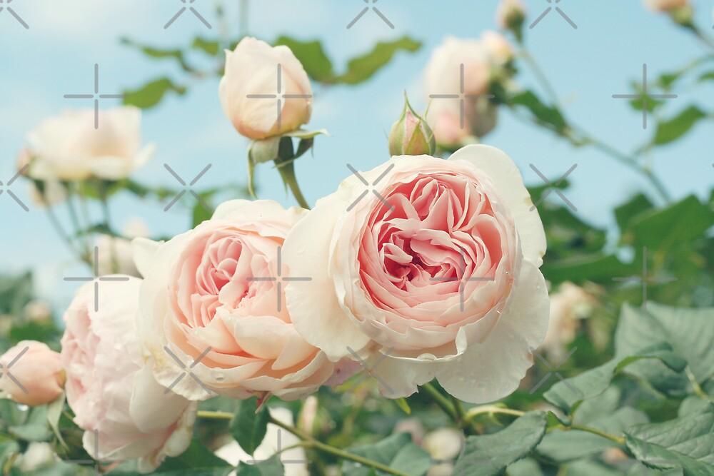 Summer Love Two by Kristybee