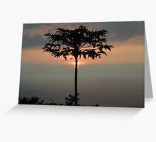 Big Island Sunset Greeting Card
