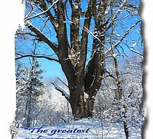 The greatest oak was once a nut by Dipali S