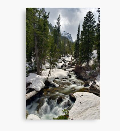 Cascades - On the Way to Hidden Falls Canvas Print