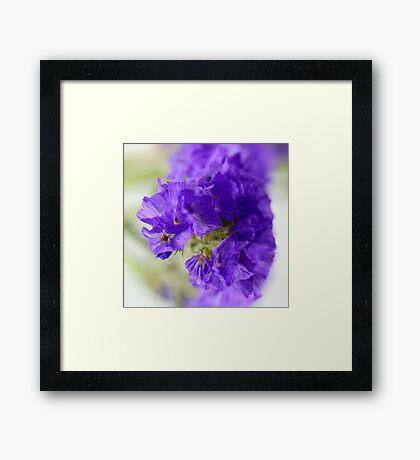 Dreamy blue flowers. Framed Print