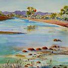 Finke River Crossing  via Hermannsburg N.T. by Virginia McGowan