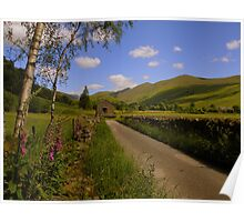 The Lake District: The Lane to Troutbeck Tongue Poster