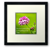 Quote on Anger. Framed Print