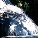 Mexican River Walk Waterfall by Leslie van de Ligt