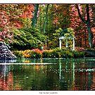 Secret Garden by Devon Mallison