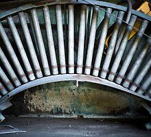 Roller by Chelsea Denien