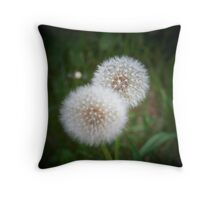 Make A Wish and Dream Throw Pillow