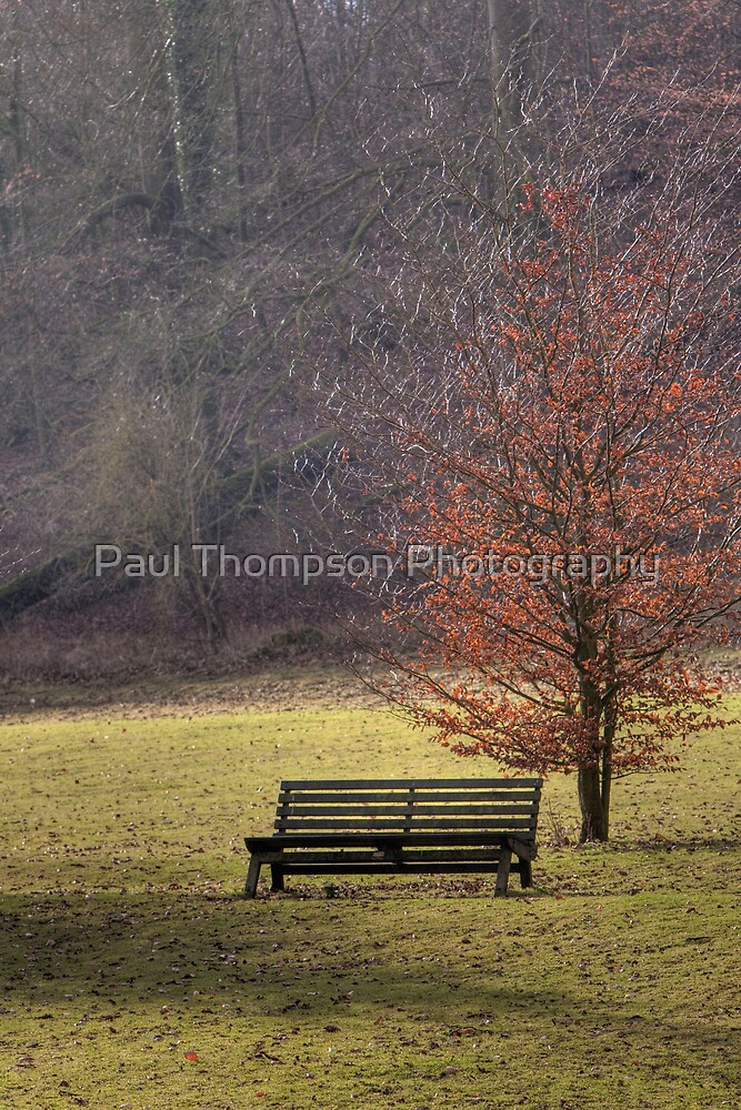 Waiting by Paul Thompson Photography