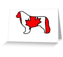 Newfoundland Dog Flag of Canada Greeting Card