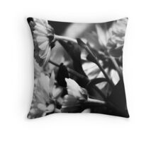 Follow the Sun - BW. Throw Pillow