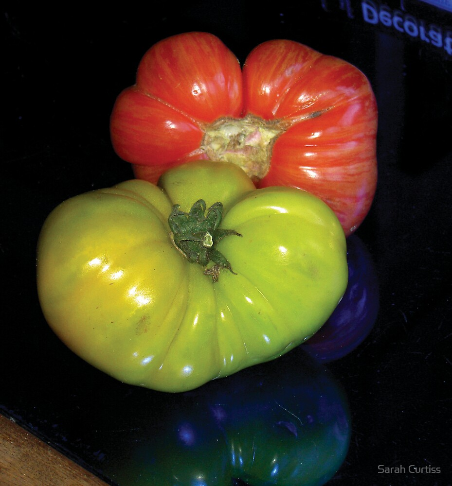 Tomatoes in Love by Sarah Curtiss