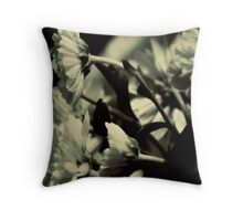 Follow the Sun. Throw Pillow