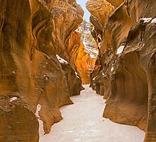 Willis Creek Narrows, Utah by Intern2