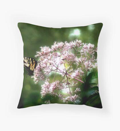 Tiger Swallowtail on Hollow Joe-Pye Weed Throw Pillow