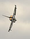 Euro Fighter by Matt Sillence