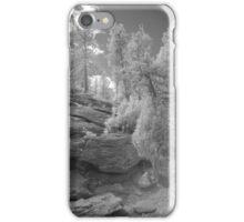 Infrared Landscape 1 iPhone Case/Skin