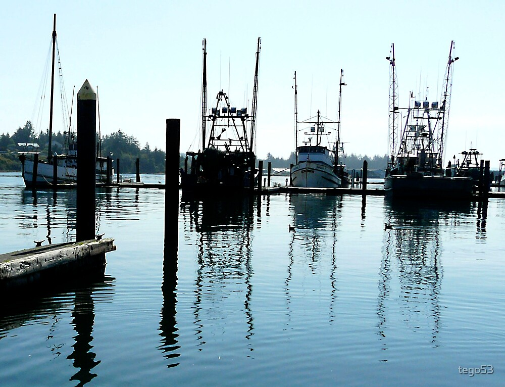 fishing boats at the dock by tego53
