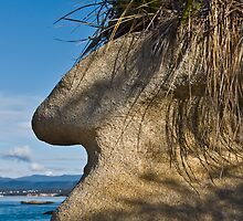 Stone Face by Shane Viper
