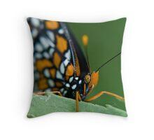 halloween butterfly (Baltimore Checkerspot) Throw Pillow