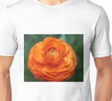Orange Ranunculus Unisex T-Shirt