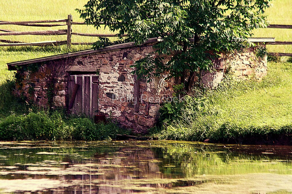 Old Springhouse by Polly Peacock